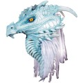 Dragon Arctic